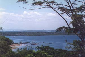 The Fishing Port at Tanga